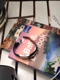 Sandy:My watch & my travel book...possibilities !